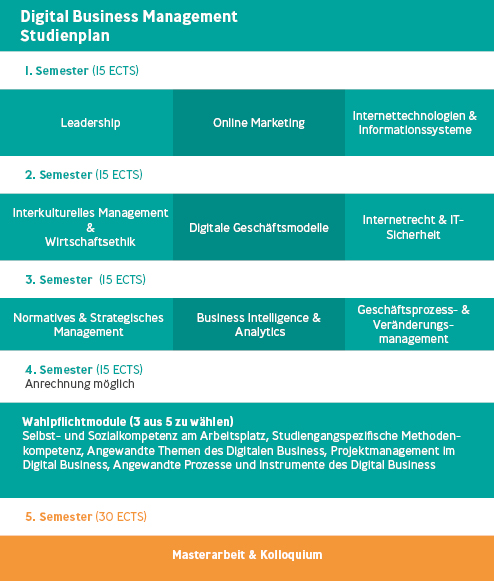 Designelement des Studienplans Digital Business Management